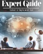 Expert Guide - Labour & Employment Law 2013 - Cover Image