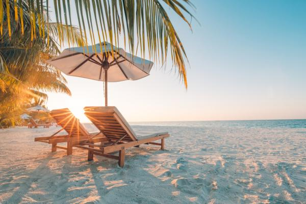 What's New In The Bahamas For August - Cover Image
