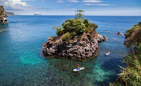 Azores Islands – A Spring of Whales and Wildlife in Portugal - Cover Image