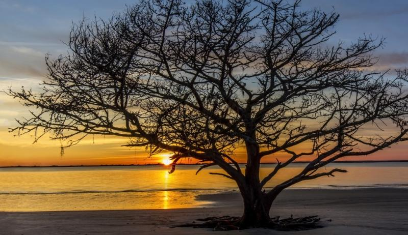 To find your happy place, try spending that well-earned time off on Jekyll Island