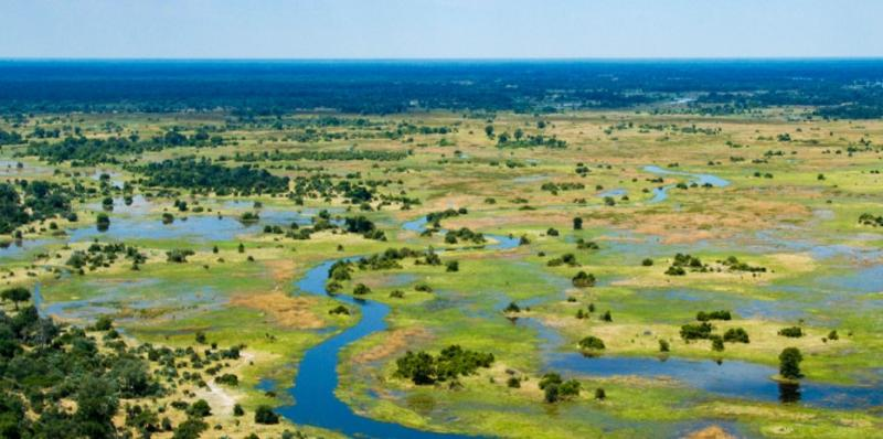 Into the Wilderness of Botswana