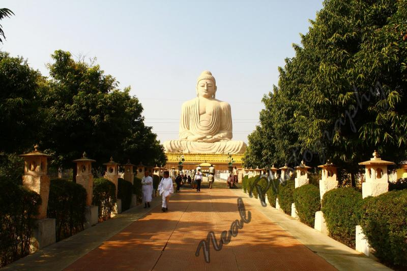 Top Travel & Tours Announces The Launch Of Bodh Gaya Rooms