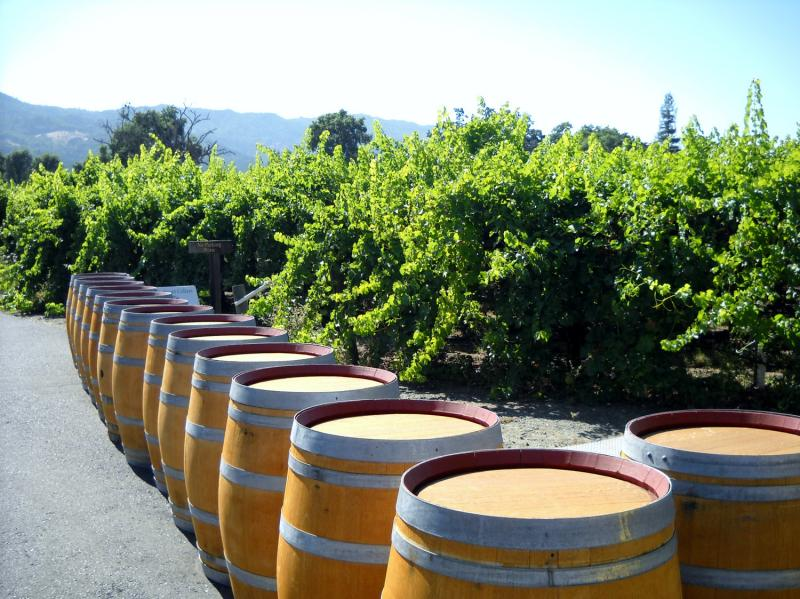 California Wine Edition Offers Insight And Warnings Following 2014 Harvest Report