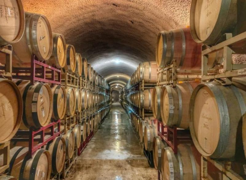 Cape Town's Top 5 Wine Tours for 2020