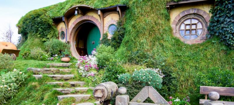 Hobbiton and Waitomo Caves, New Zealand