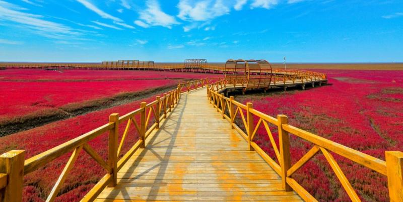 Time to Visit the Spectacular Red Beach